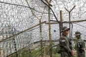 Ngeri! Petugas Pemerintah Korsel Ditembak dan Dibakar Tentara Korut