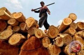 Hutan Jatim Diproyeksi Bisa Produksi Kayu 526.474…