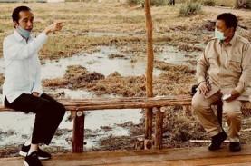 Prabowo Subianto Tanam Singkong, Menhan Apa Mentan…