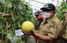 Pemkab Blitar Dorong Petani Hortikultura Adopsi Sistem Green House