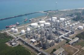 Petrokimia, Bisnis Masa Depan Pertamina
