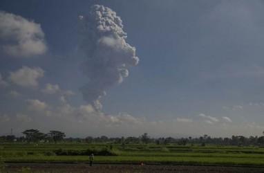 377 Hektare Sawah di Klaten Bakal Tergusur Tol