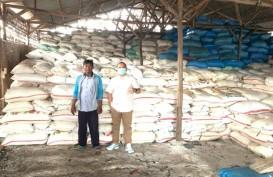 Tunaikan Penugasan, Agro Jabar Serap Ribuan Ton Garam Petani Lokal