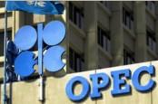 Peringatan 60 Tahun OPEC: Antara Ada dan Tiada