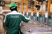 Suspensi Dilepas, Saham Trinitan Metals (PURE) Langsung Ngamuk