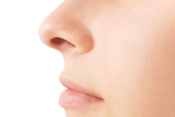 Hidung - Istimewa