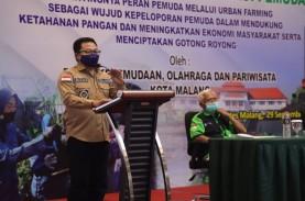 Milenial Kota Malang Diajak Menggeluti Urban Farming