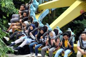 Nasib Jungle Land (JGLE), Nia Ardi Bakrie & Janji…