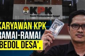 Karyawan KPK Ramai-Ramai 'Bedol Desa', Tak Cocok dengan…