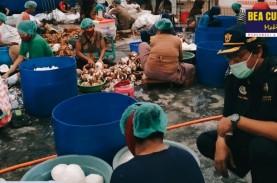 Bea Cukai Makassar Fasilitasi Ekspor Perdana Daging…