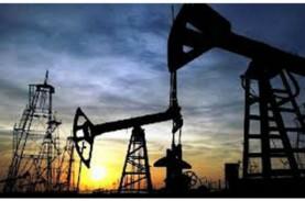 Eni Kian Dekat Gantikan Chevron di Proyek IDD