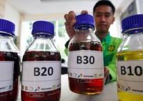 Petugas memperlihatkan contoh bahan bakar biodiesel saat peluncuran Road Test Penggunaan Bahan Bakar B30 (campuran biodiesel 30% pada bahan bakar solar) pada kendaraan bermesin diesel, di Jakarta, Kamis (13/6/2019)./Bisnis-Abdullah Azzam