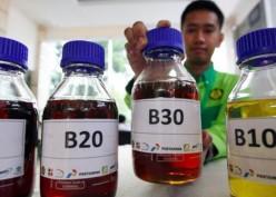 Nasib Emiten Biodiesel di Tengah Mahalnya Harga CPO