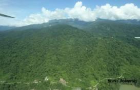 Akibat Perubahan Iklim, Hutan Tropis pun Terancam Terbakar