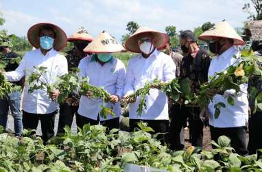 MenkopUKM Fokus Menyiapkan Koperasi Percontohan di Sektor Pangan