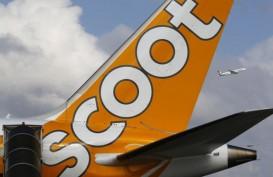 Scoot Kurangi Frekuensi Terbang ke Indonesia, Kenapa?