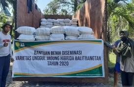 Genjot Sektor Pangan dan Pertanian, Ini Terobosan Pemerintah