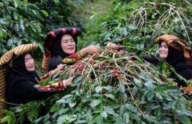 Melepas Jerat Isolasi, Mimpi Pembangunan di Tengah Aceh