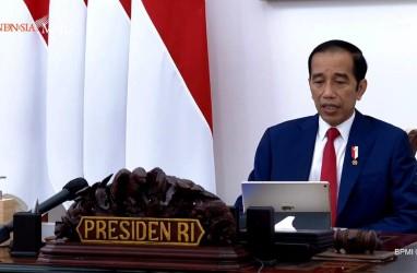 Jokowi: Sektor Pertanian Tumbuh Paling Tinggi di Tengah Pandemi