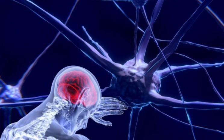 Gejala neurologis pada pasien virus corona (Covid/19).