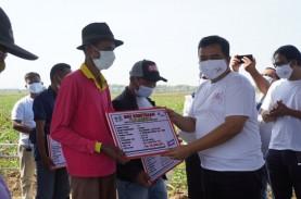 Rajawali Nusantara Membagikan Sisa Hasil Usaha Rp1,2…