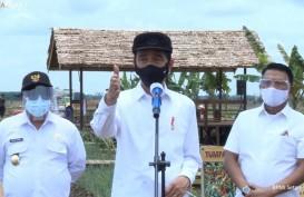 Jokowi Pamer Teknologi Modern di Proyek Food Estate Kalteng