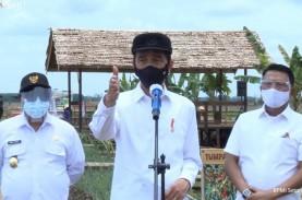Jokowi Pamer Teknologi Modern di Proyek Food Estate…