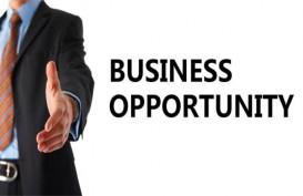 Model dan Peluang Bisnis Masa Kini