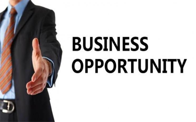 Peluang bisnis - ilustrasi