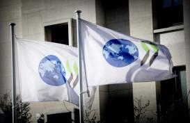 Konsensus Pajak Digital Tertunda, OECD Ingatkan Potensi Perang Dagang Global