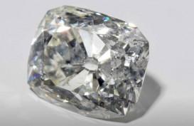 Wow! Belanda Siap Kembalikan Berlian 36 Karat Ini ke Kesultanan Banjarmasin