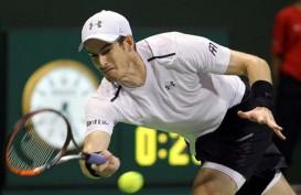 Belum Kembali ke Performa Terbaik, Murray Tersingkir di Turnamen Cologne