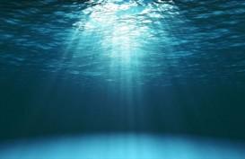 Suhu Perairan Laut Dalam Perlahan Menghangat, Apa Dampaknya?
