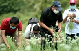 Pemprov Sumut Berencana Kaji UU Cipta Kerja Bersama Banyak Pihak