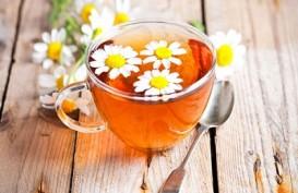Teh Herbal Bisa untuk Pengobatan Penyakit Asam Urat