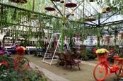 Berburu Spot Instagramable di Taman Bunga Lezatta