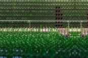 Demi Kurangi Emisi Karbon, Produsen Bir Bintang Daur Ulang Botol Bekas