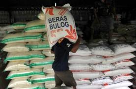Maluku 'Impor' 6.000 Ton Beras dari Jatim untuk Natal…