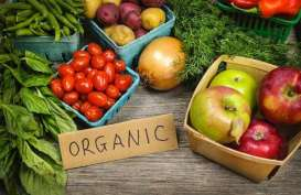 Greenara Optimistis Jadi One Stop Solution Makanan Sehat