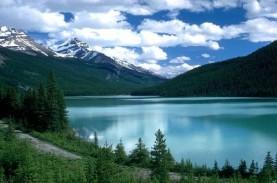 Alaska Diguncang Gempa Magnitudo 7,5, Ada Peringatan…