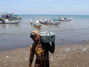 KPP Susun Daftar Penyakit Ikan Berbahaya Untuk Jaga Kualitas Ekspor Indonesia