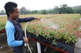 PROGRAM KEMITRAAN PTPN V : Produktivitas Petani Sawit…