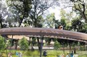 6 Fakta Menarik Revitalisasi Taman Tebet Jadi Tebet Eco Garden