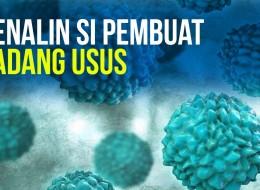 Habis Covid-19, Hadirlah Norovirus