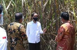 Siap Serap 15.000 Tenaga Kerja, Jokowi Apresiasi Pabrik Gula di Bombana