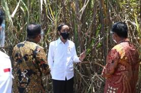 Siap Serap 15.000 Tenaga Kerja, Jokowi Apresiasi Pabrik…