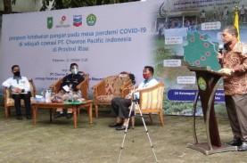 Produksi Beras Riau Hanya Cukupi Kebutuhan 23,6 Persen…