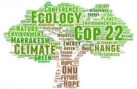 Perubahan Iklim dan Efek The Green Swan dalam Pemulihan Ekonomi