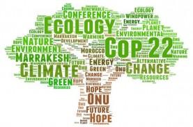 Perubahan Iklim dan Efek The Green Swan dalam Pemulihan…