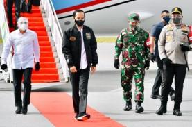 Didampingi Luhut, Jokowi Hari Ini Tinjau Food Estate…